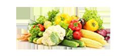 کاربردهای وکیوم در صنایع غذا