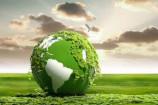 کاربردهای وکیوم در صنایع سبز